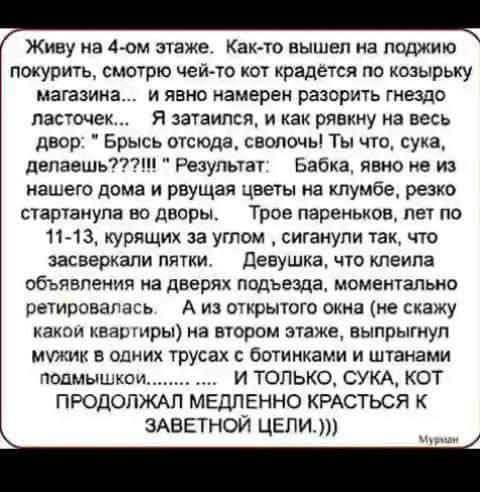 FB_IMG_1532116673299.jpg