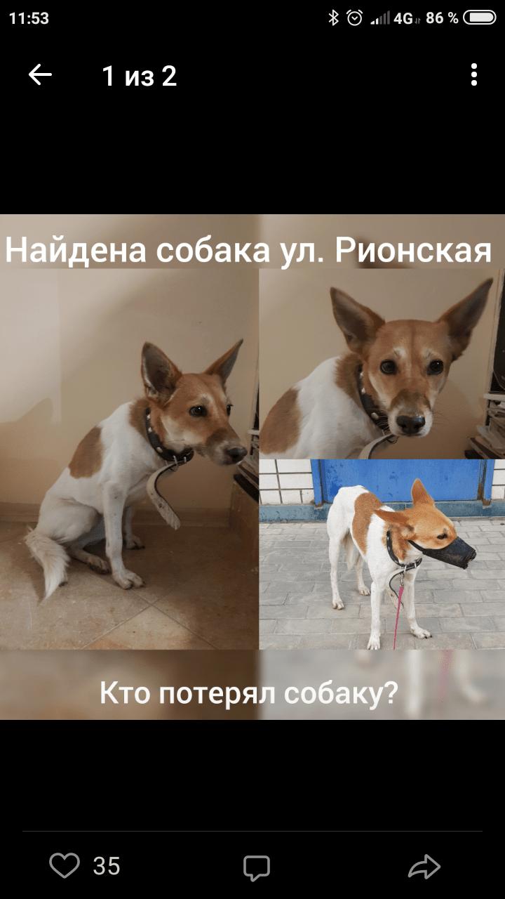 Screenshot_2019-05-03-11-53-36-705_com.vkontakte.android.png