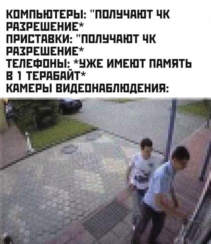 13045209.jpg