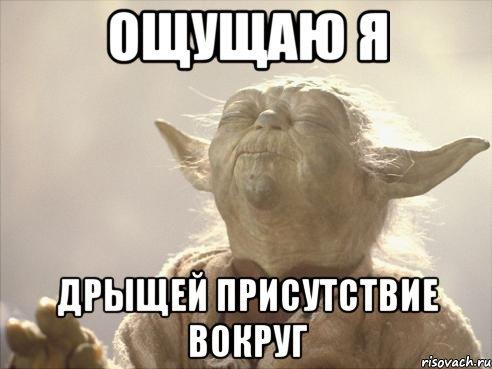 yoda_29947539_orig_.jpeg