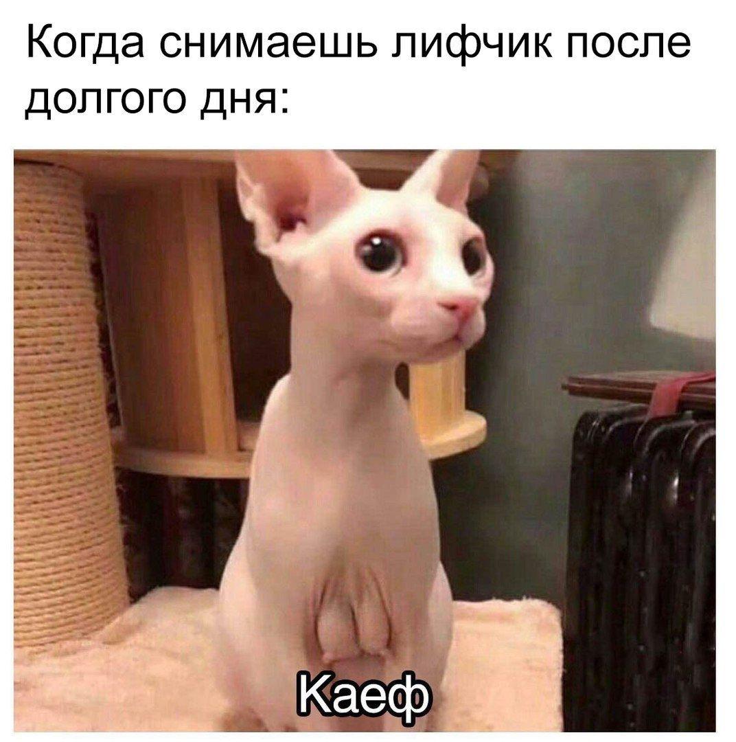 IMG_20190904_111659.jpg
