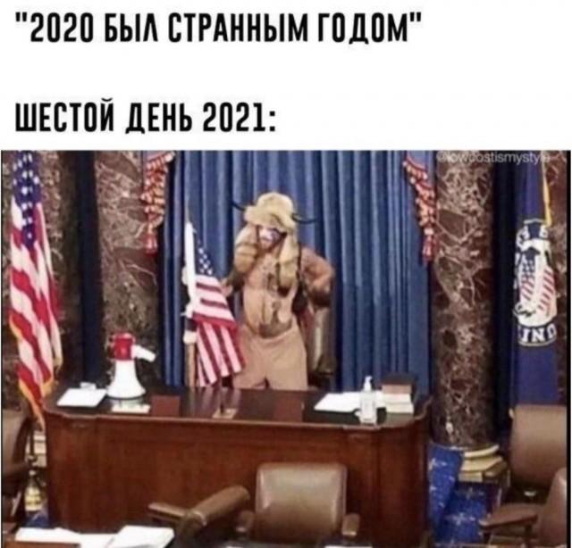 15110787.jpg