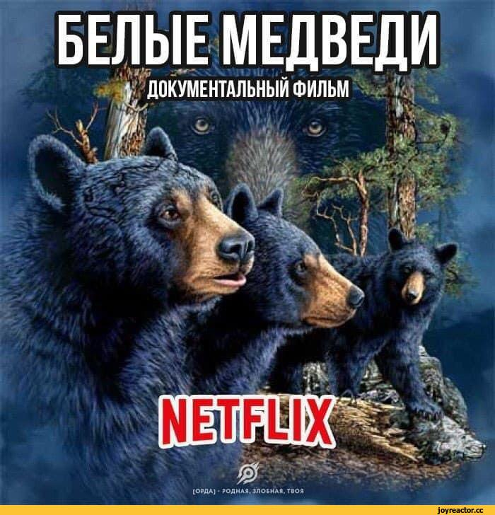 netflix-adaptation-Медведи-6002251.jpeg